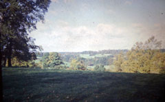 Old postcard of Countryside, Henley.